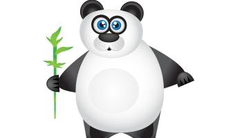 Panda wciąż przechodzi przez sieć