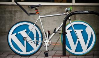 Posiadasz spamowe komentarze w moderacji systemu Wordpress? Uważaj!