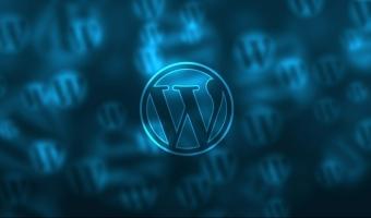 Wordpress SEO, czyli jakie wtyczki warto zainstalować