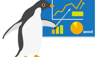 Pingwin Update 3
